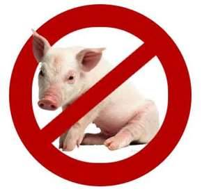 Not Kosher pig in symbol