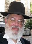 Rabbi Daniel Edensohn Daas Torah blog