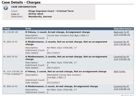 Amrom Mendlovitz plea details 7-18-17 5 E Felonies & 1 D Felony